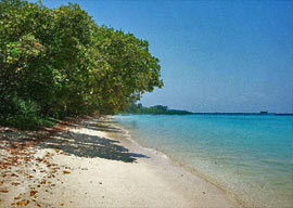 Beaches of Neil Island, Andaman
