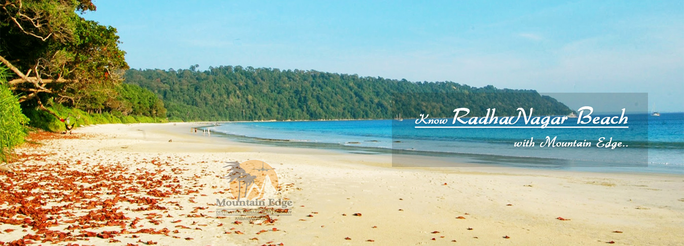 Radhanagar Beach Havelock Island Andaman